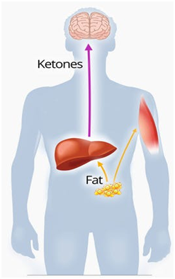 Tips to boost your ketosis