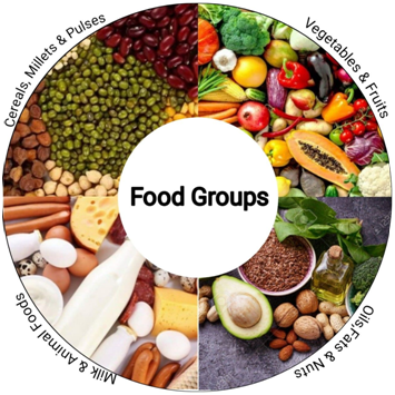 Food groups for weight loss
