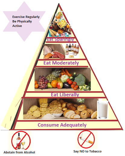 food guide pyramid for weight loss